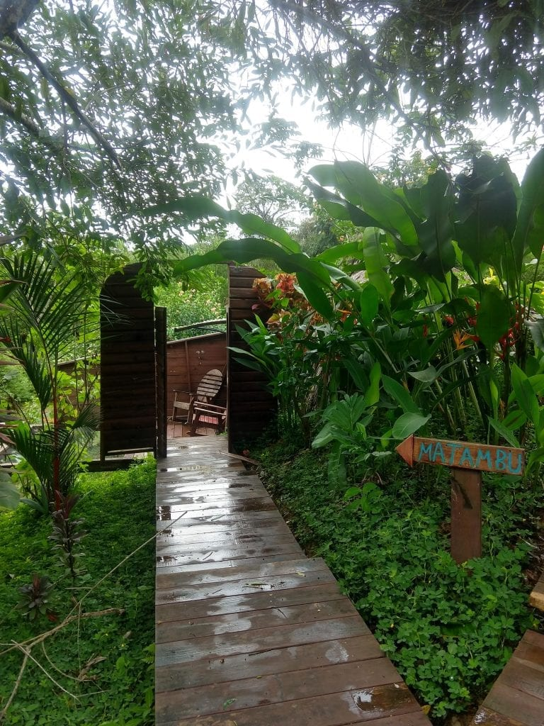 My private Bungalow at Bambuda Lodge in Bocas Del Toro surrounded by the jungle of Panama. #visitpanama #bocasdeltoro