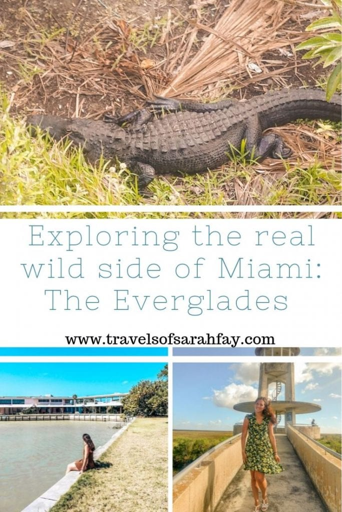 Pin this for later to see the real wild side of Miami the Everglades. A short drive away you can get up close with alligators, crocodiles, and do fun activities such as airboat rides! #visitflorida #everglades