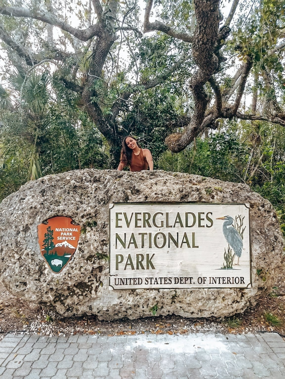 Exploring the real wild side of Miami: The Everglades
