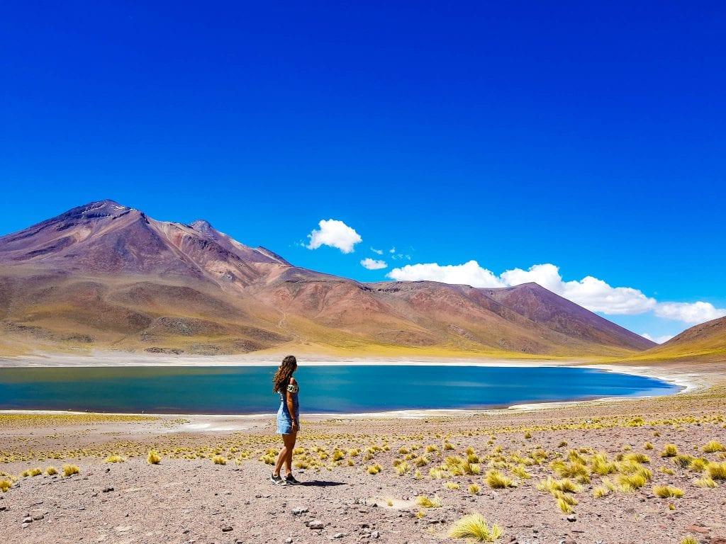 VISIT LAGUNA MISCANTI AND LAGUNA MIÑIQUES a road trip away from San Pedro de Atacama, Chile.