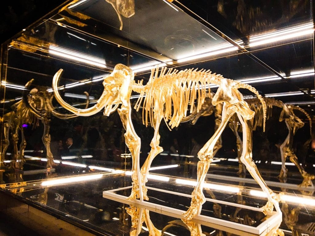 Gold Mammoth statue at Faena Miami on display in huge lighted up box at night. Art Basel Miami Beach at Faena Festival.