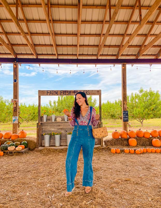 Southern Hill Farms, Fresh flowers stand, and Sarah Fay travel blogger looking for the perfect pumpkin.