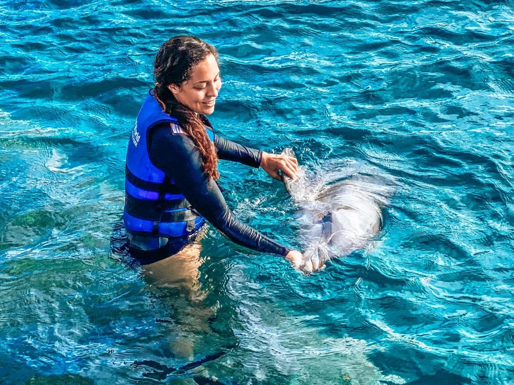 Sarah Fay travel blogger with dolphin learning about them in an open ocean sea sanctuary for dolphins at Coral World Ocean Park in St. Thomas, USVI. Things to do in St. Thomas, USVI.